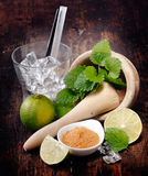 Ingredients for Mojito Stock Image