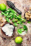 Ingredients for Mojito cocktail Royalty Free Stock Image