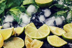Ingredients for mojito Stock Photography