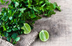 Ingredients for mojito. Fresh mint, limes, sugar over wooden  ba Royalty Free Stock Photo