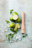 Ingredients for mojitos Royalty Free Stock Image