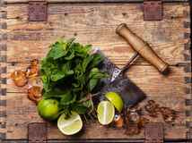 Ingredients for mojitos Stock Photo
