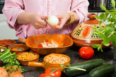 Ingredients for Moroccan tajine Royalty Free Stock Image