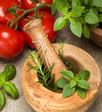 Ingredients. Mortar and Pestle with fresh herbs and tomatoes. Herbs shown include basil, rosemary and thyme royalty free stock photo