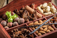Ingredients and nuts for chocolate Royalty Free Stock Photo