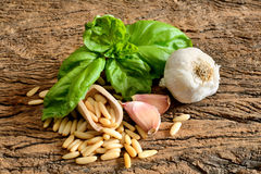 Ingredients for pesto Genovese Stock Photography