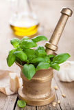 Ingredients for pesto sauce Royalty Free Stock Images