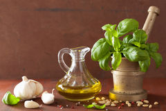 Ingredients for pesto sauce over wooden rustic background Royalty Free Stock Photo