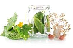 Ingredients for pickled or preserved cucumbers on white Royalty Free Stock Image