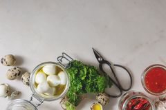 Ingredients for pickled quail eggs stock photo