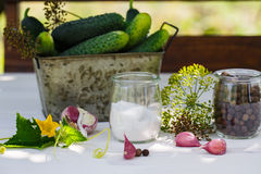 Ingredients for pickling cucumbers. Horizontal royalty free stock photos