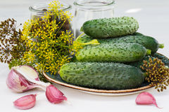 Ingredients for pickling cucumbers, horizontal. Ingredients for pickling cucumbers horizontal royalty free stock photos