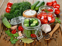 Ingredients for pickling cucumbers and tomatoes Stock Image