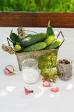 Ingredients for pickling cucumbers, vertical. Ingredients for pickling cucumbers vertical royalty free stock images