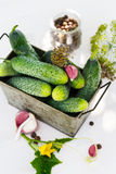 Ingredients for pickling cucumbers. Vertical stock photography