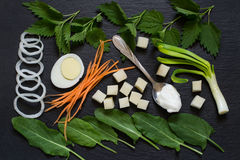 Ingredients for preparation vitamin soup of sorrel and nettles. Ingredients for preparation Russian traditional vitamin soup of sorrel and nettles on slate Stock Photos