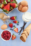 Ingredients for preparing ice cream Royalty Free Stock Photo