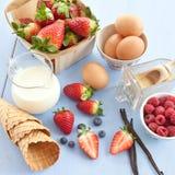 Ingredients for preparing ice cream Stock Image