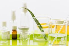 Ingredients for production of natural beauty cosmetics, close-up. Ingredients for production and packaging of natural beauty cosmetics, aloe vera lief Royalty Free Stock Photography
