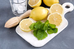 Ingredients for refreshment summer drink. Traditional ingredients for lemonade with lemon mint and ice Wooden squeezer Mint leaf T. Refreshment Summer drink Royalty Free Stock Image