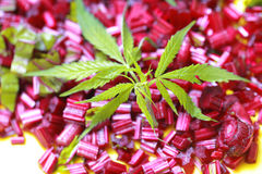 Ingredients for salad cannabis leaf hemp fresh beets sliced potatoes Royalty Free Stock Photography