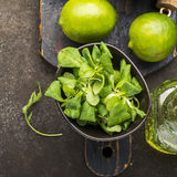 Ingredients for salad: rucola, root salad, olive oil, limes on a dark background. Seasonal Healthy Eating. Ingredients for salad: rucola, root salad, olive oil Stock Photography