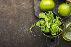 Ingredients for salad: rucola, root salad, olive oil, limes on a dark background. Seasonal Healthy Eating. Ingredients for salad: rucola, root salad, olive oil Royalty Free Stock Photo