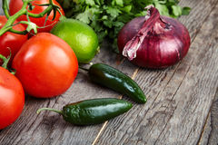 Ingredients for sauce Pico de Gallo, salsa fresca Royalty Free Stock Images