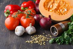 Ingredients for seasonal pumpkin soup stock image