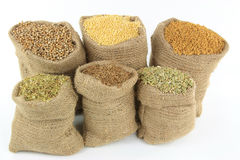 Ingredients, Seasonings, Spices and herbs. Still image of burlap sacks full with different herbs, seasonings, ingredients, and spices used in preparing food Royalty Free Stock Photo