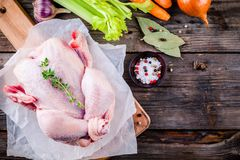 Ingredients for soup broth:  chicken, carrots, celery, onions Stock Images