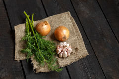 Ingredients for soup or salad: onion, garlic on a dark background Royalty Free Stock Image