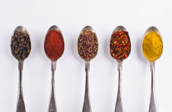 Ingredients spices 4 in spoons isolated on white background Stock Image