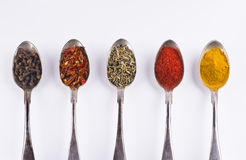 Ingredients spices 3 in spoons isolated on white background Stock Photos