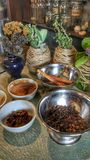 Ingredients for the Tea, Plants and Spices. Spices and Plant for making tea and coffee Royalty Free Stock Photo