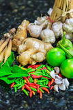 Ingredients thai food Royalty Free Stock Image