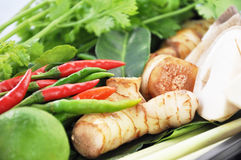 Ingredients of Thai Tomyum suop. Main ingredients of Thai spicy soup (Tomyum Royalty Free Stock Image