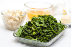 Ingredients to make the filling of a spinach and tuna quiche lorraine Royalty Free Stock Photography