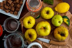Ingredients to make jam and applesauce yellow, reinetas. royalty free stock photos