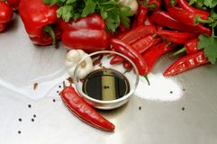 Ingredients to make a paprika chili garlic dip. Red chili, pepper, pepper corns, paprika, garlic,sugar, soya sauce, parsley on a stainless steel counter top Royalty Free Stock Images