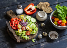 Ingredients to prepare vegetable salad - tomatoes, cucumber, celery, bell pepper, red onion, quail eggs, garden herbs and spices o Royalty Free Stock Photography