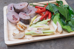 Ingredients of Tom Yam Fish Stock Photography