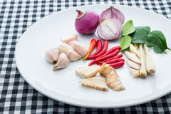 Ingredients of Tom Yam. On white plate Royalty Free Stock Images