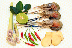 Ingredients for Tom Yum Koong. Stock Photos