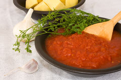 Ingredients - Tomato Juice Royalty Free Stock Photography