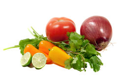 Ingredients for tomatoe salsa. Salsa ingredients isolated on white royalty free stock image