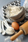 Ingredients and tools to make russian pelmeni Royalty Free Stock Photo