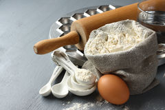 Ingredients and tools to make russian pelmeni Royalty Free Stock Images