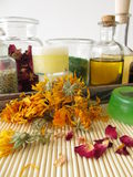 Ingredients and utensils for homemade cosmetics Stock Image
