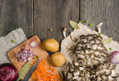 Ingredients for vegetable soup. vegetables cucumber onions potatoes carrots mushrooms Royalty Free Stock Images